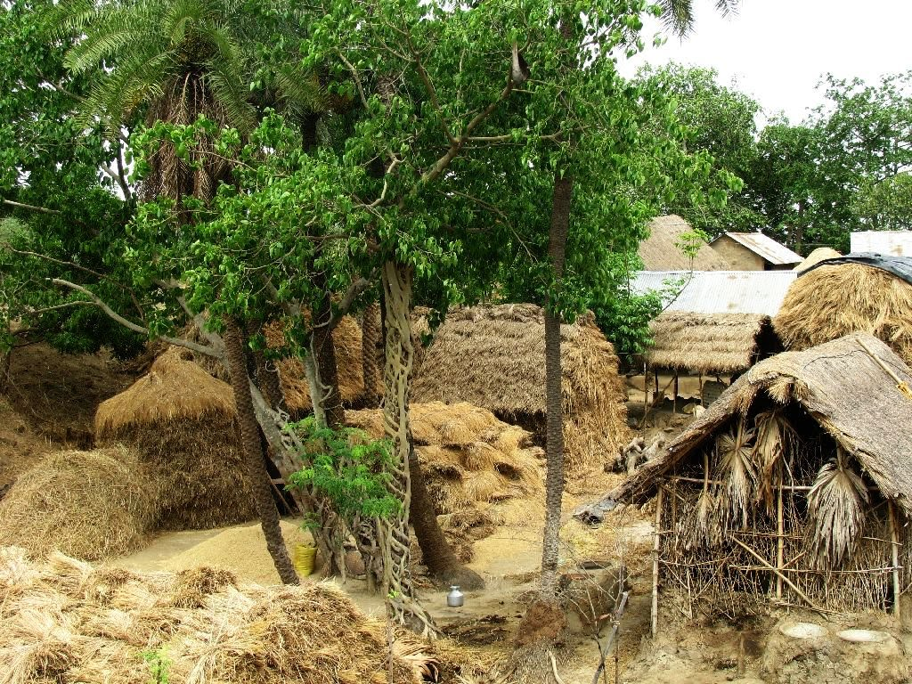 ...world through my lenses: oh!... just another Indian village