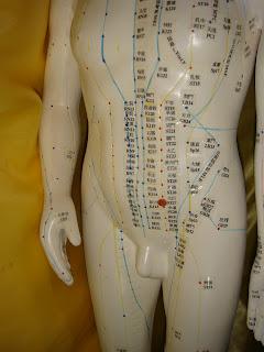 T.C.M. Doctor Grace Wong Kit Ying 黃潔英中醫針灸師: 28. 水道穴Shui-dao(紅點處)
