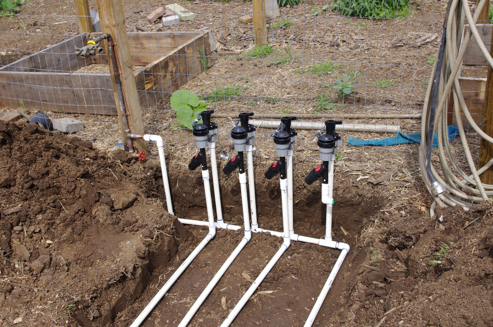 How To Install Irrigation Dog Island Farm