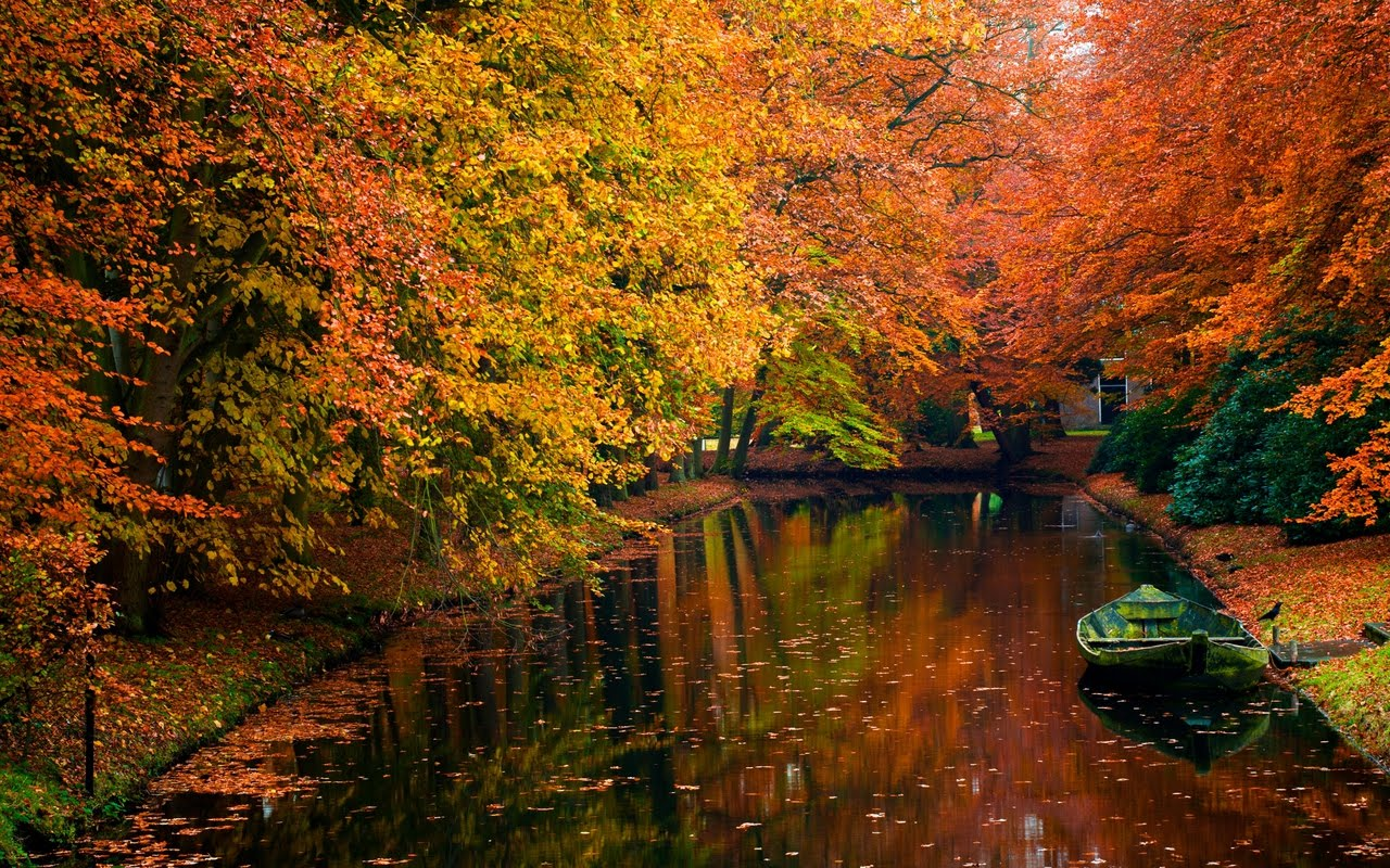 Autumn Landscape - Nature Wallpaper | Hd Wallpaper
