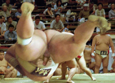 gay sumo wrestler sex jpg 853x1280