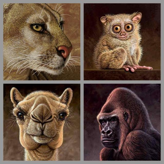 Caricaturas de animais