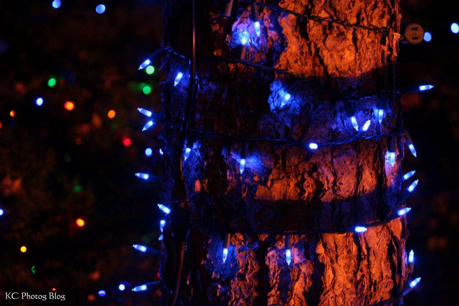 1600 Sf To Sm Kc Photog Blog Holiday Lights