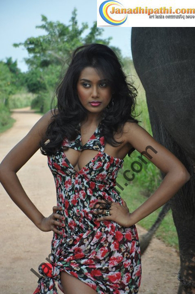 Hot Gossip Storys Elephant Girl - Sri Lanka-6667