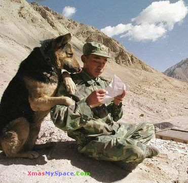USA Army forch and dog square reading latter funny photo