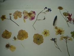 my Mother's dried flowers