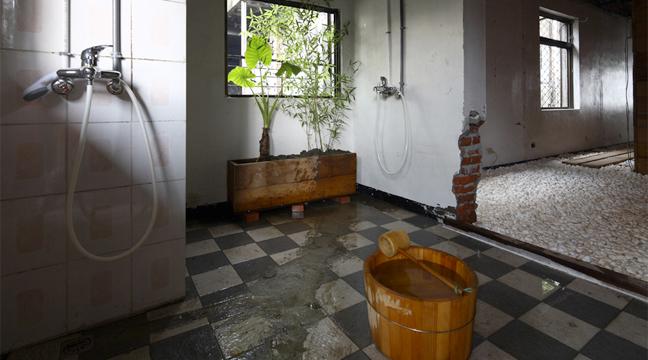 Flora urbana l acad mie de la ruine - Faire pousser du bambou ...