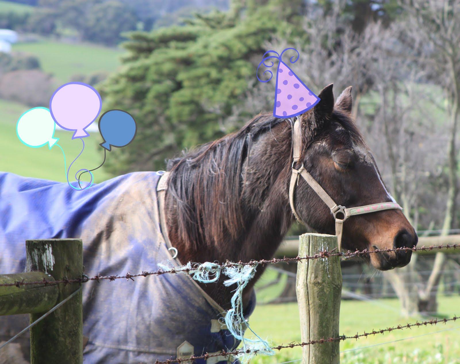 Run Wild Horses Jewellery: Happy Birthday Horses