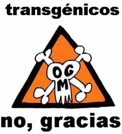 https://i2.wp.com/3.bp.blogspot.com/_3gKjkVP-K1I/SfbvAw5XWTI/AAAAAAAAADQ/jUShCP6jWac/s320/20090131144028-transgenicos-no-gracias.jpg