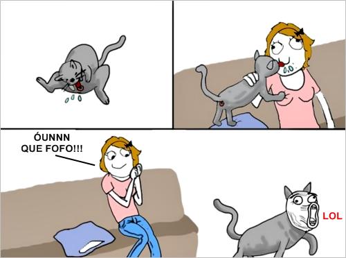 Gatos são pervertidos e nojentos