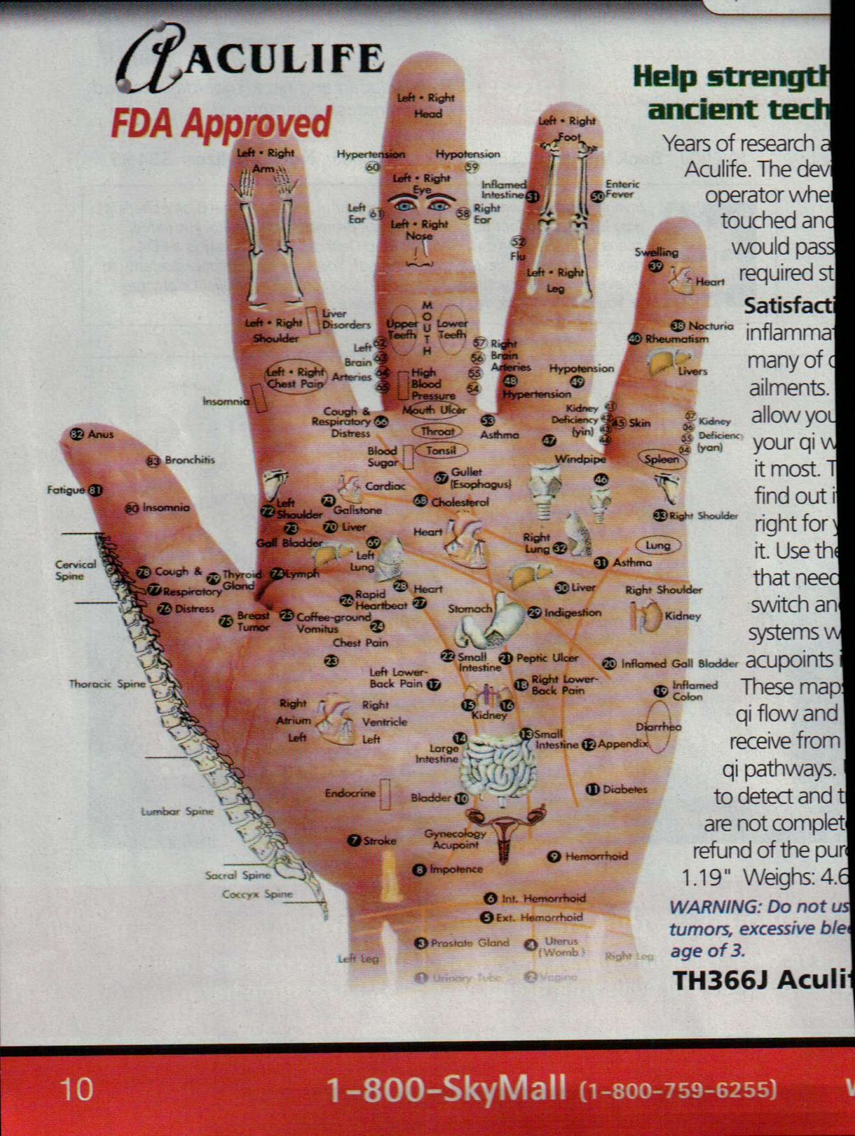 Brunette Facial reflexology map Curtin's mom
