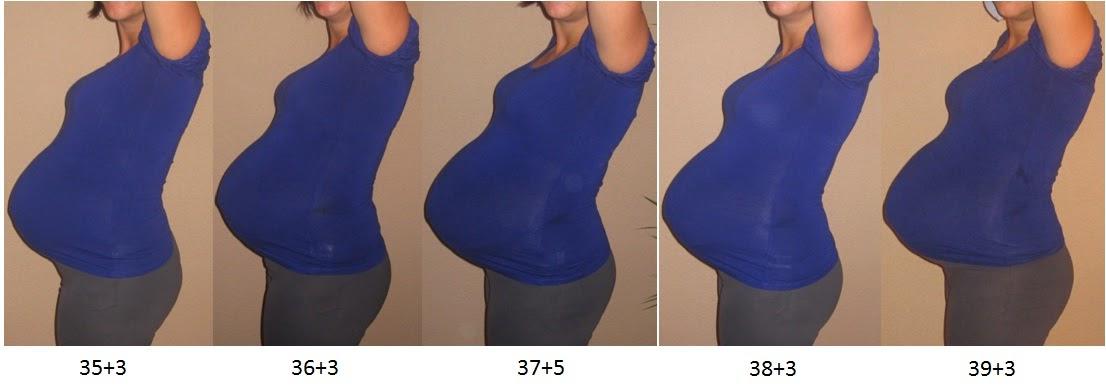 Ssw 17 Gewichtszunahme