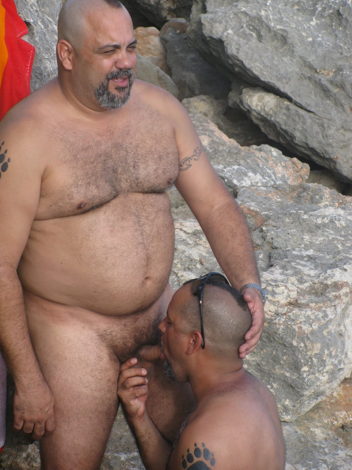 Old Daddy Bear Sucking Cock