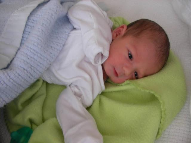 Henry is 1 week old!