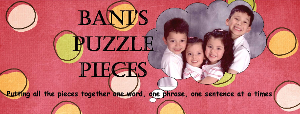 Bani's Puzzle Pieces