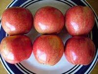 como hacer el dia de la manzana en la dieta hcg