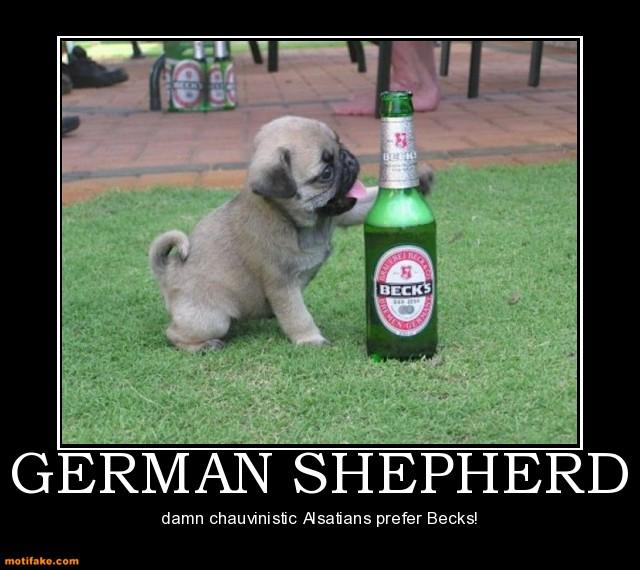 Funny German Shepherd Quotes