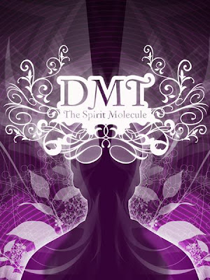 DMT+The+Spirit+Molecule.jpg