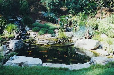 Acuarios y estanques un estanque en tu jardin for Estanques prefabricados grandes