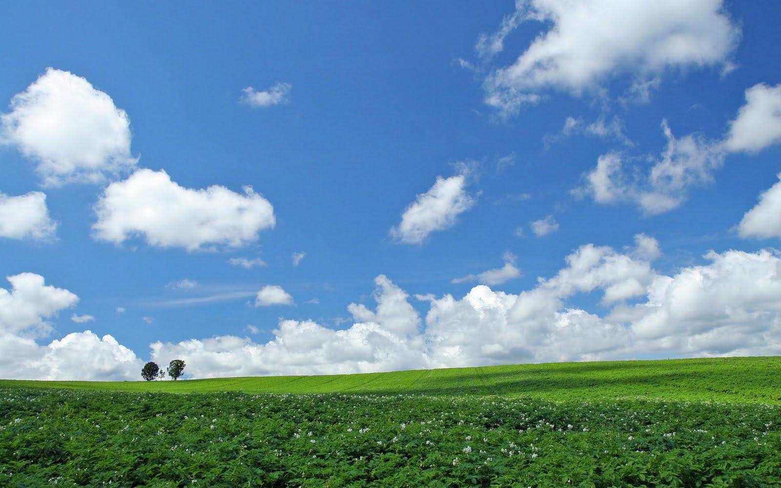 japan hokkaido landscape image - photo #8