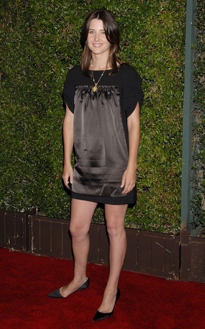 Leg Girl Wallpaper Celebrity Wallpapers And Videos Cobie Smulders