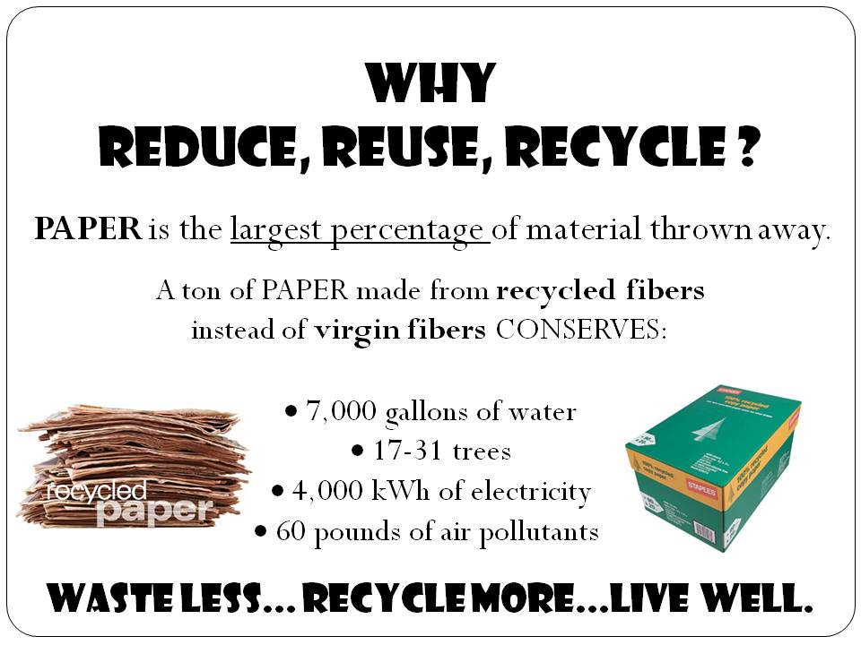 3r recycle reuse reduce essay