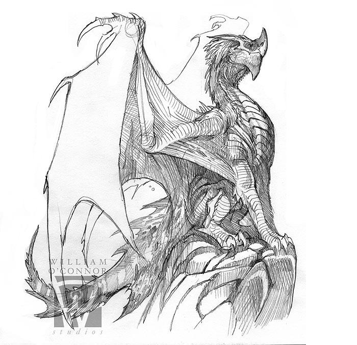 The Dracopedia Project: Dracopedia Sketchbook #003