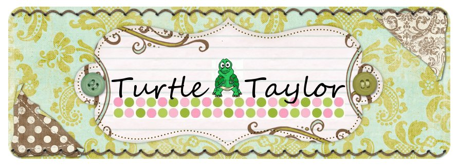 Turtle Taylor