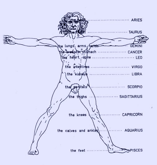 Parts Of Mans Body 89