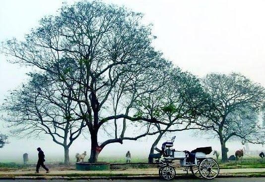 Kolkata Winter Temperature