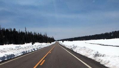 Snow along SR67 Kaibab NF AZ