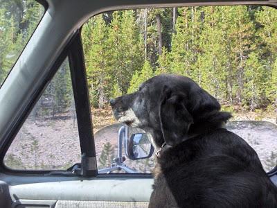 Carson in truck