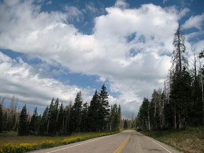 Road to Cedar Breaks National Monument Utah