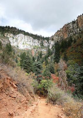 North Rim from North Kaibab trail Grand Canyon National Park Arizona