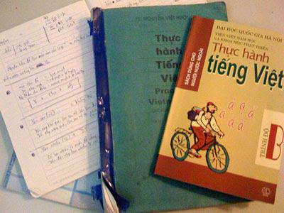 Hanoi Scratchpad: Learning Vietnamese: Past The Basics