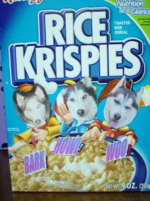 https://i1.wp.com/3.bp.blogspot.com/_5YaweI8xyj8/R9QLsqD-BlI/AAAAAAAAB4E/9i5Lqamkqq0/s400/cereal.JPG