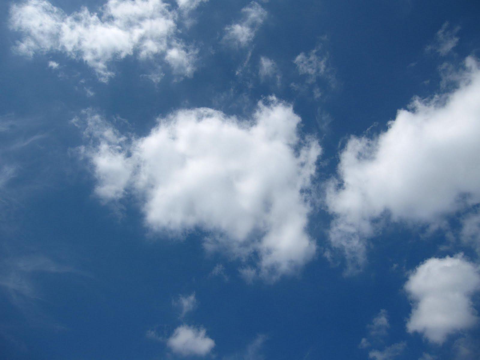 雲一つない青空もきれいだけれど、雲で模様付けされた空もとても楽しくて好... 絵本~雲のてんらん