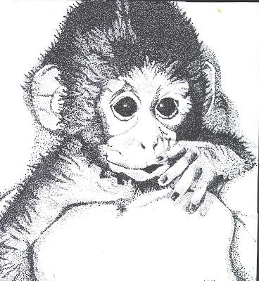 art @ the heart: Grade 10 Drawing: Stipple Animals