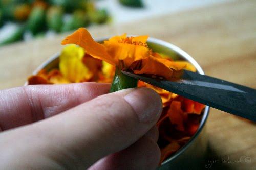 snipping marigold petals