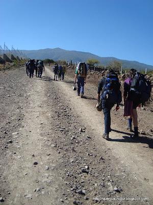 Iniciando el ascenso a Cerro Viejo por San Miguel Cuyutlán