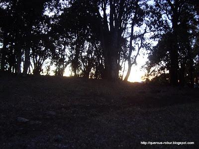 Amanecer en Cerro Viejo