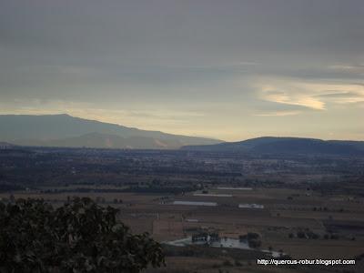 El Nevado de Colima a los lejos, detrás de Cerro Viejo