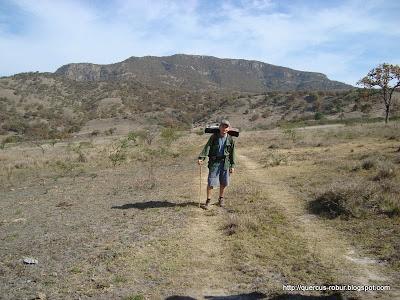 Cerro los Bailadores, Arenal - Zapopan