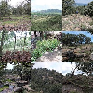 Paisajes en el Cerro Jacal de Piedra