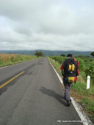 Carretera a Puerta de la Vega - Cerro Grande de Ameca