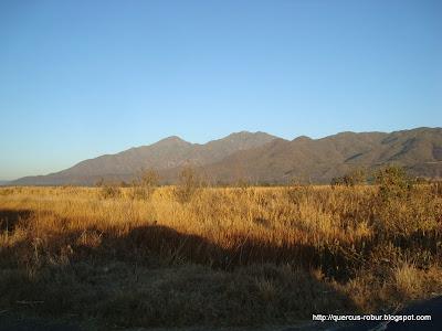 Cerros en la carretera a Vallarta