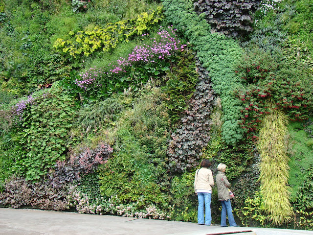 Muro Vegetal, Vegetal Wall, Patrick Blanc, Caixa Forum, Madrid, Elisa N, Blog de Viajes, Lifestyle, Travel