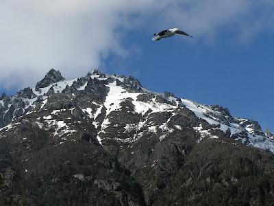 Voyage en Patagonie Argentine: tour à Puerto Blest 2