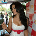 Koena Mitra's Hot Cleavage Show