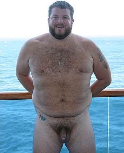 fat but big bear